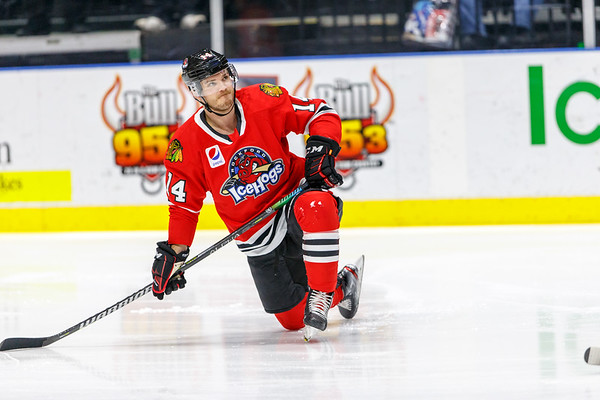 2020-02-08 - IceHogs vs. Rampage
