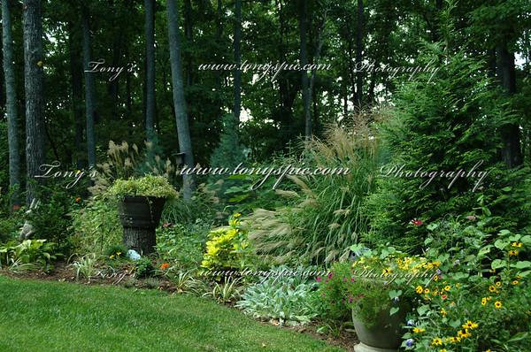 Bertha's Garden