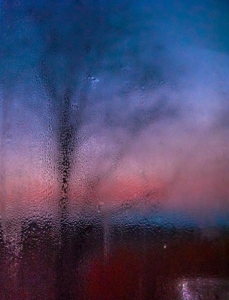 Bathroom Window