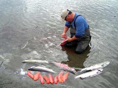Fishing Montana Creek