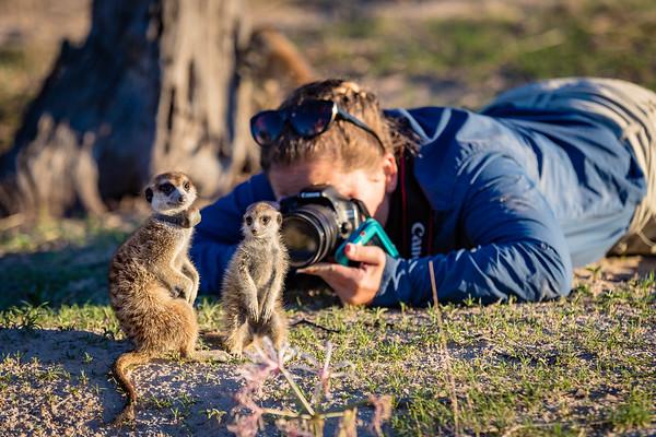 Kalahari Meerkat Photo Safari