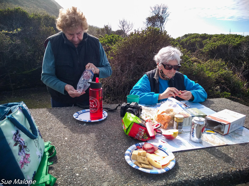 02-16-2016 Lost Coast and Redwoods from Deb-6.jpg