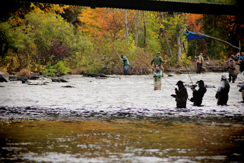 Salmon River 401.jpg