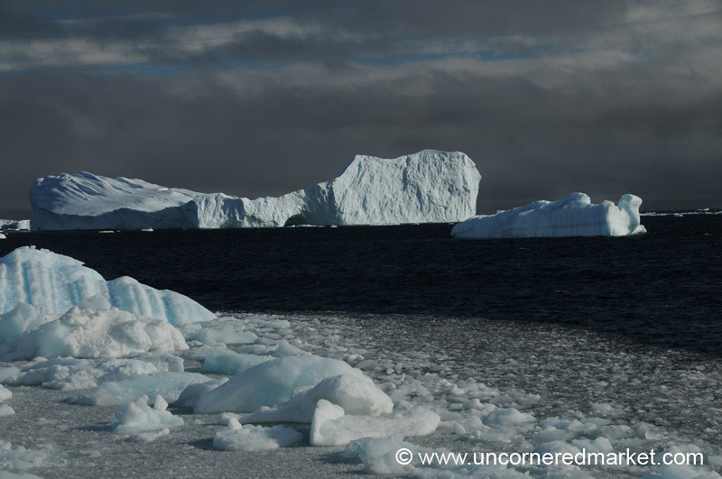 Sun Shining on Icebergs - Antarctica