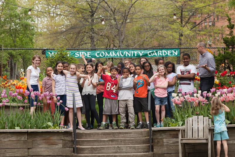 Tulip Garden Favorite may2015-6954.jpg