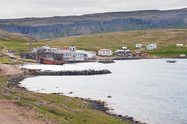 Hornstrandir 23. til 28. júlí 2010