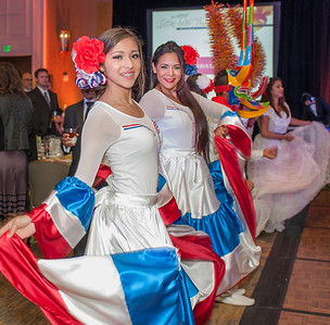 Latin Fever Ball 2014