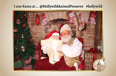 Hollywild Santa Photos - 121119