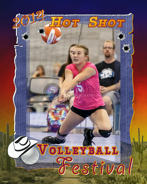 2014 Volleyball Festival