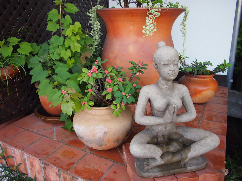 PC058922-garden-meditation.JPG