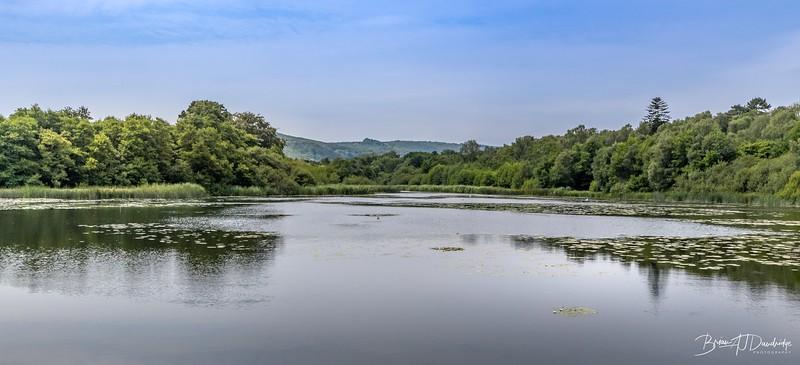 Burton and Chingford Ponds (24 of 24).jpg