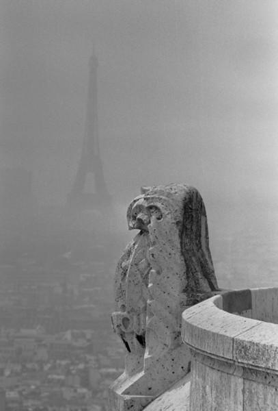 Eiffel Tower and Gargoyle - Paris, France