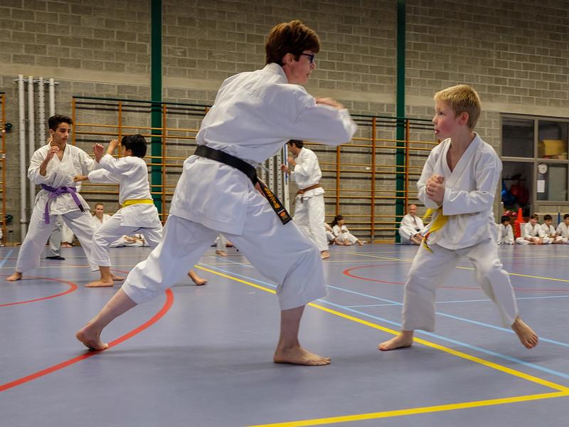 20180622_karate_examen_132.jpg