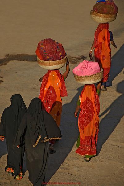 India2010-0204A-441.jpg
