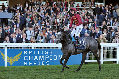 Champions Day - Ascot - October 20