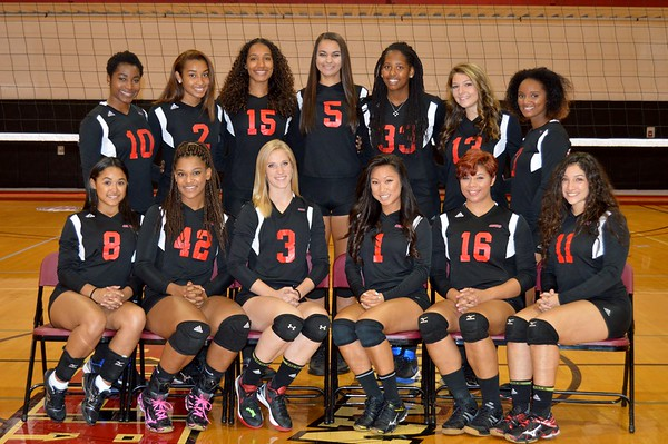 2016-17 Women's Volleyball