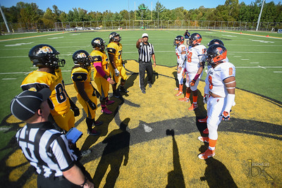 Bowie State  (Homecoming 2016) vs Virginia State