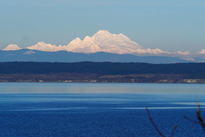 P2100022 Mount Baker from Coupeville.jpg
