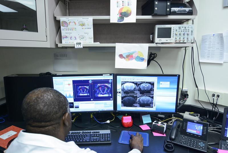 CNRM 2018 labs278.jpg