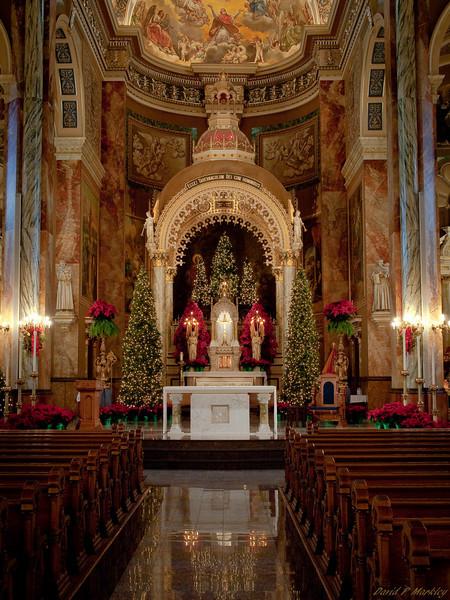 Basilica Beauty