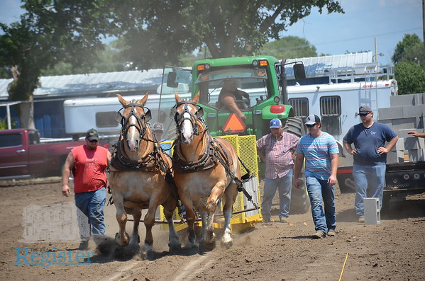 Terry Ellis Memorial Draft Horse Pull