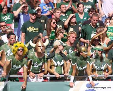 USF football fans