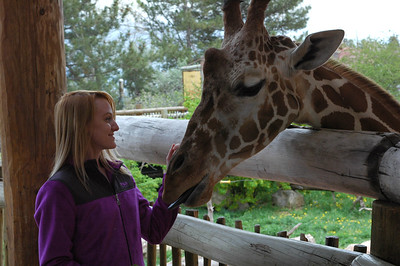2015 Cheyenne Mountain Zoo