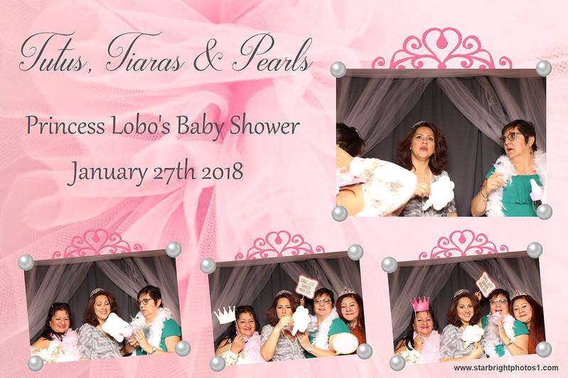 Lobo Baby Shower_09.jpg