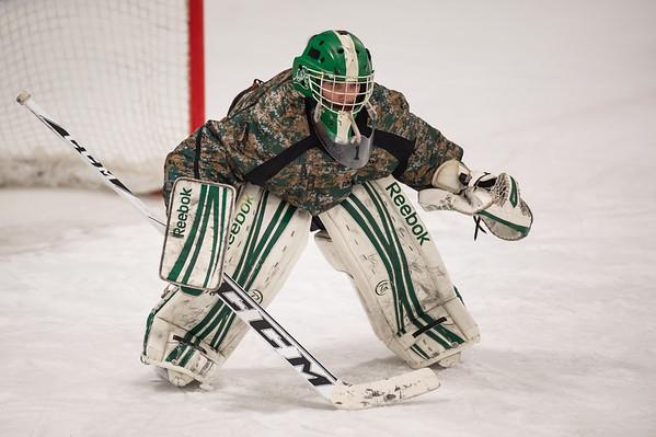 2014-15 HS Hockey