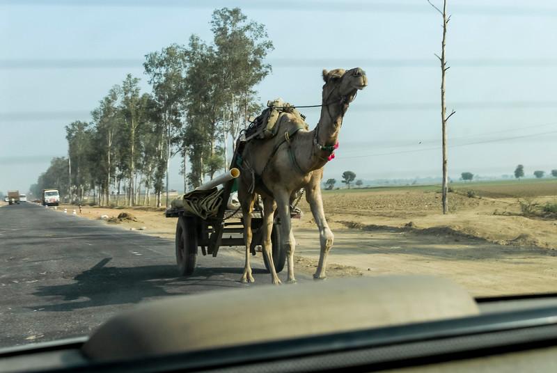 Roads_in_India_1206_026.jpg
