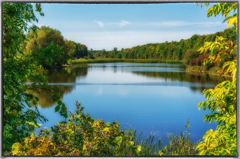 Beaver Pond Kanata Ontario