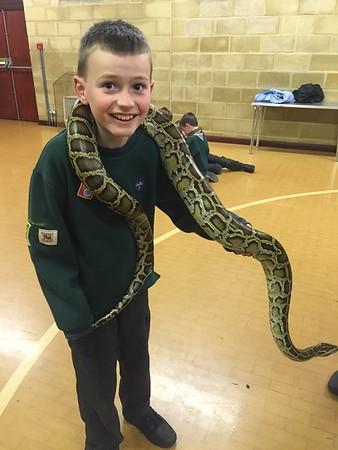 2016 - Reptile Visitors
