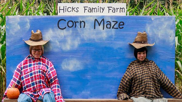 Hick's Corn Maze