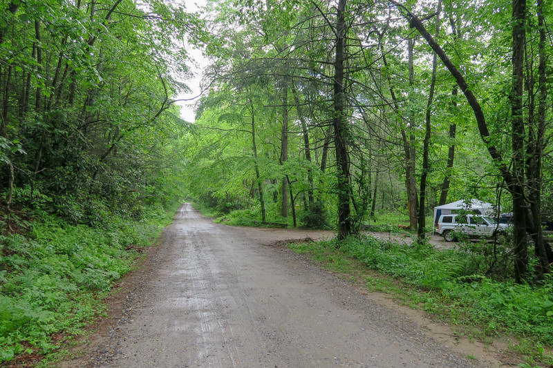 Forest Road 479/Forest Road 479H