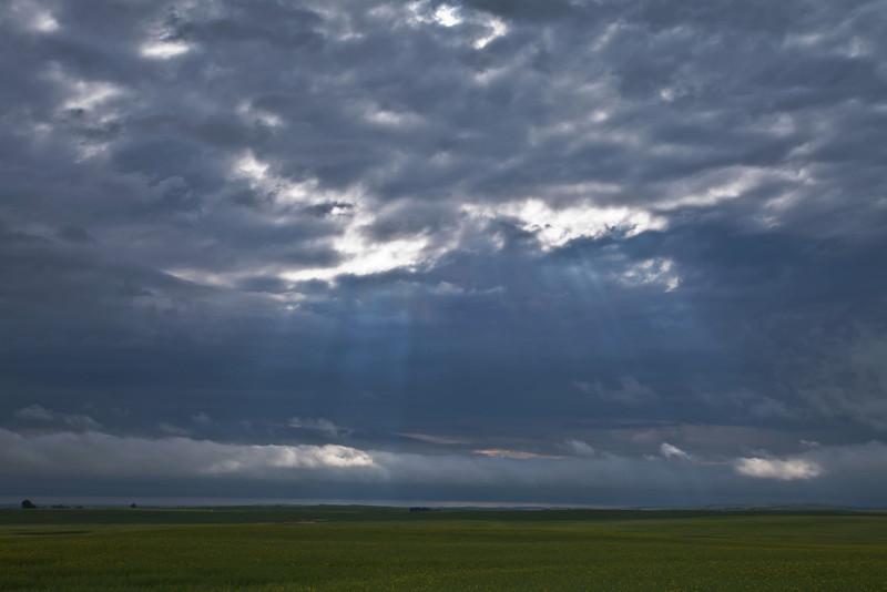 Prairie light.