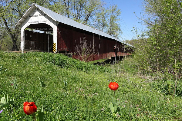 Parke County Covered Bridges, Indiana 2012