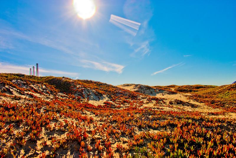 Scenic California 3: Journey to Northern California