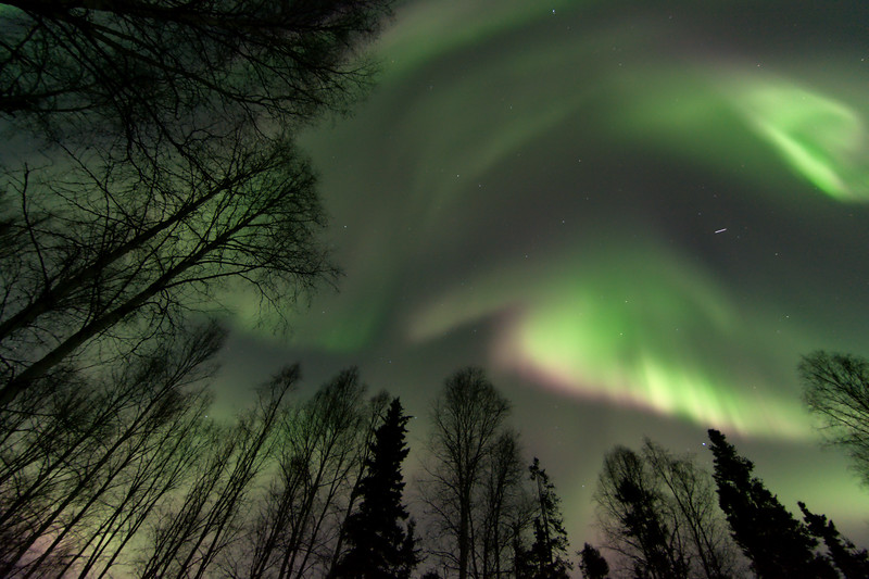 Big Aurora