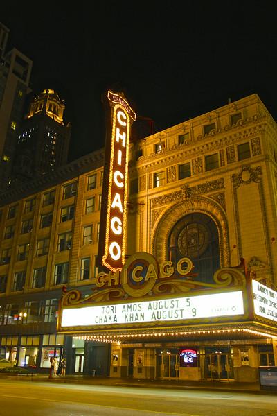 Chicago2014 246