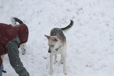 Snow2-11-10