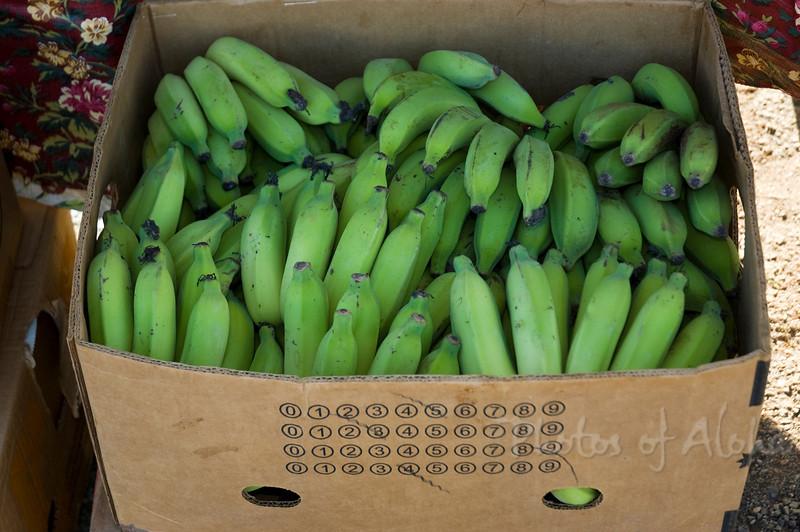 Hale'iwa's Farmers Market