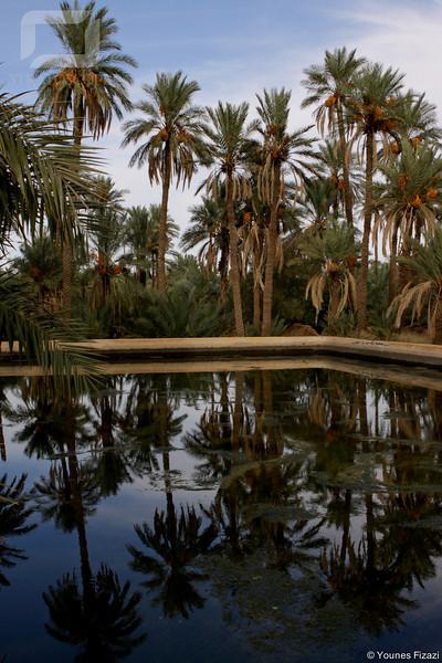 Bassin de distribution d'eau