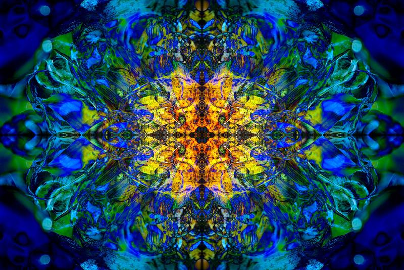 20201012-_DSC4552-Edit-mirror-2-4.jpg