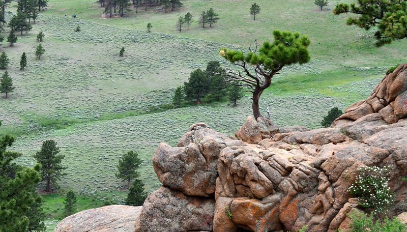 Colorado 06-16-2013 107.JPG
