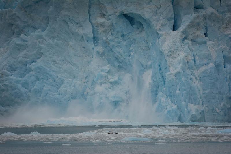 Kenai-Fjords-121.jpg