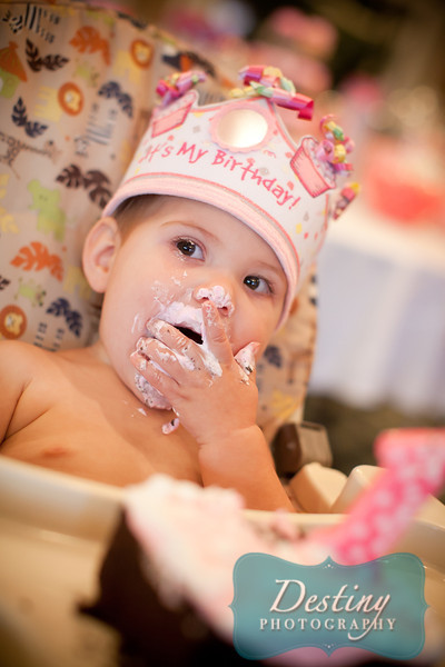 Moxie's 1st Birthday Party Pix
