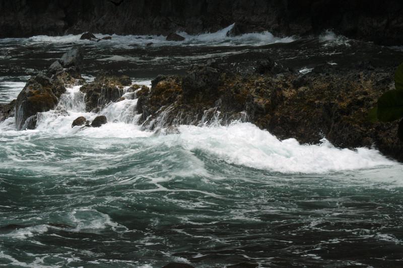 180- 20080410- Hawaii 15- Enroute to Hilo- Hawaii Tropical Botanical Gardens DSC_2769.jpg