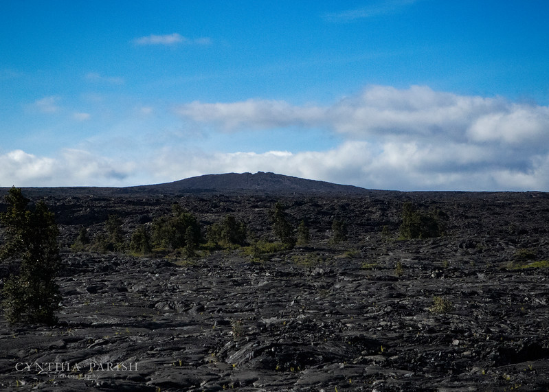 LavaFlow_Volcano_Hawaii_664A1164.jpg