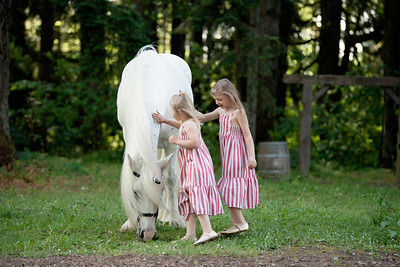 Kristina Ernstrom Unicorn