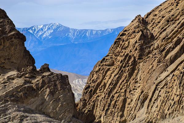 Superbloom 2016 - Death Valley NP